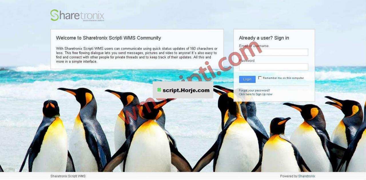 ShareTronix v3.6.0 Social Sharing PHP Script